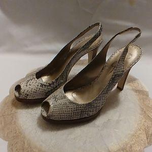 Women Shoes size 8
